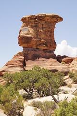 Big Spring Canyon Overlook (Tjflex2) Tags: bigspringcanyon canyonlandsnationalpark utah