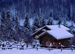 winter (beddinginnreviews) Tags: beddinginnreviews fashion reviewsbeddinginn beautiful comfortable