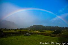 IMG_3384 (The Mitz Photography) Tags: gams grünersee hochschwab mariazell maryclan murmerl mädels nebel pilgern sommer steinbock wandern