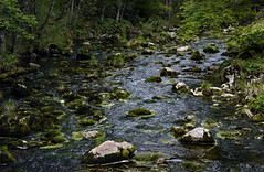 Mossy Stones at twilight (Andreas Mezger - Art Photography) Tags: a pure nature river stones stone water wet dark vibrant colours high contrast hiking nikon d810 85mm