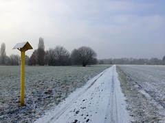gelb steht (shaza sha) Tags: winter snow nature outside killingtime ablenkung hometownlove
