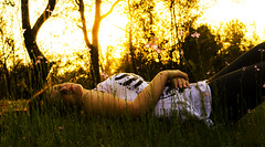 Laying in wait for the day to come by. (beachstudios) Tags: flowers sunset green field golden twilight fantasy hour mysterious hdr