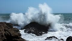 Big Splash (Tones Corner) Tags: sea wave spray coastline nzscene nzscenery