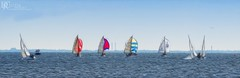 The Race Painted (Dennis Cluth) Tags: art st race nikon sailing florida painted petersburg sailboats 70300mm d800 fractalius