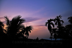 Evening sky (Tapas Biswas) Tags: travel light sunset sky india color colour nature silhouette sunrise outdoors nikon day image artistic antique candid bluesky bengal clearsky westbengal tranquilscene beautifulnature d90 nikond90 nikod90 nikond9o