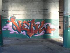 veal (httpill) Tags: streetart chicago art graffiti tag graf gary
