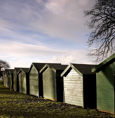 Beach huts at Appley (gallyslave) Tags: sunlight colour green leaves seaside oldbuildings huts hut isleofwight repetition 20mm 20 beachhuts iow appley vertorama