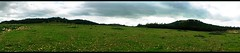 Sidi Maafa Park (The-s) Tags: africa park forest pin north peak morocco maroc eucalyptus oriental northern foret parc nord sidi afrique jbel شمال sommet pinus hamra alep maafa oujda المغرب جبل سيدي غابة الشرق منتزه حمرة وجدة معافة