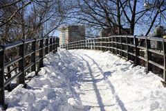Winter Storm Nemo (nd-nʎ) Tags: winter snow boston massachusetts snowstorm blizzard winterstorm noreaster winterstormnemo blizzardof2013