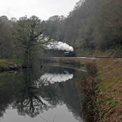 1450 Darting about (*Firefox) Tags: reflection dart riverdart gwr collett greatwesternrailway 1450 canonef100400mmf4556lisusm southdevonrailway 14xx 042t canoneos5dmarkii 1400class