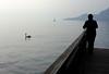 ammirazione (pansy_gold) Tags: people swan italia lungolago lagodigarda sailer veneto veliero