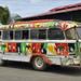 I bus variopinti di San Carlos