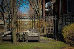 Lets talk (andrea AMADO) Tags: usa chicago canon eua oakpark 2013 canont4i