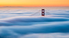 Above The Clouds - San Francisco, California (Jim Patterson Photography) Tags: sanfrancisco california city morning travel bridge tower beautiful fog sunrise dawn bay central foggy scenic goldengatebridge bayarea metropolis iconic span marinheadlands jimpattersonphotography jimpattersonphotographycom seatosummitworkshops seatosummitworkshopscom