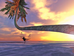 Monkey (Bleem Belargio) Tags: ocean sleeping sunset sea sky sun beach animal clouds monkey nap waves tail relaxing sl secondlife palmtree hammock lensflare spidermonkey