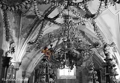 One of them is unlike the others. (Lyndsay Shearer) Tags: church photoshop skulls skull europe republic czech body chapel haunted human hora ossuary bones czechrepublic bone lyndsay bodies republika kutnhora shearer kutn churchofbones esk eskrepublika sedlac deseased lyndsayshearer