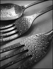 Utensils (The LightCatcher) Tags: blackandwhite bw utensils water metal lumix drops spoon panasonic forks waterdrops leicalens pnasonic lx3