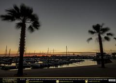 Moving Trees Sundown (andrewtijou) Tags: andrewtijou nikond7200 europe spain puntadelmoral costadelaluz port sunset harbour water boats palmtrees es