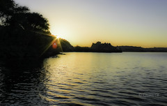 Sunset over the Nile (Osama Ali Photography) Tags: aswan nile water nature naturaleza natura natural egypt birds pjaros pjaro river rio agua reflections reflexin boat barco sailing vela sunset sun sol trees