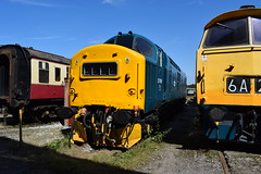37190 and D1048 WESTERN LADY at Swanwick (colin9007) Tags: midland railway centre butterley swanwick english electric type 3 class 37 37190 d6890 br swindon diesel hydraulic 4 52 d1048 western lady maybach