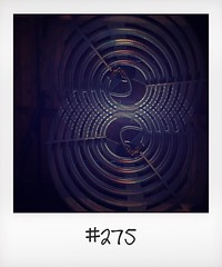 """#DailyPolaroid of 29-6-16 #275 • <a style=""""font-size:0.8em;"""" href=""""http://www.flickr.com/photos/47939785@N05/28735556840/"""" target=""""_blank"""">View on Flickr</a>"""