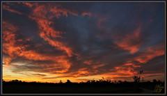 ELO (WanaM3) Tags: wanam3 sony a700 sonya700 texas houston vista twilight civiltwilight landscape sunset