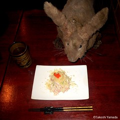Dr. Takeshi Yamada and Seara (Coney Island Sea Rabbit) at the Sake Japanese sushi buffet restaurant in Brooklyn, NY on March 27, 2016.  20160527Fri DSCN6234=4040C. crab salad (searabbits23) Tags: searabbit seara takeshiyamada  taxidermy roguetaxidermy mart strange cryptozoology uma ufo esp curiosities oddities globalwarming climategate dragon mermaid unicorn art artist alchemy entertainer performer famous sexy playboy bikini fashion vogue goth gothic vampire steampunk barrackobama billclinton billgates sideshow freakshow star king pop god angel celebrity genius amc immortalized tv immortalizer japanese asian mardigras tophat google yahoo bing aol cnn coneyisland brooklyn newyork leonardodavinci damienhirst jeffkoons takashimurakami vangogh pablopicasso salvadordali waltdisney donaldtrump hillaryclinton endangeredspecies save