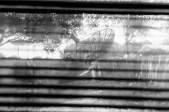 Satellite Obsolete (cmh photographs) Tags: satellite blackandwhite window blinds satellitedish broadcast television tv blackwhite nikon d750 obsolete old abandoned decay