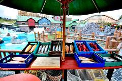 Fischmarkt in Island - Europapark Rust (fish.eye65) Tags: europaparkrust europapark rust funfair
