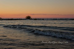 20160828-IMG_7773-WM (Pamela McLellan Zmija) Tags: pamelamclellanzmija saugeenshores portelgin sunset beach lakehuron goblesgrove sunshine