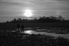 rosenhoehe (12 von 12).jpg (Jens Hoefling) Tags: trees winter sunset panorama sun tree nature field sunshine forest sunrise germany children landscape deutschland blackwhite sonnenuntergang hessen wiese kinder schwarzweiss landschaft sonne wald bume sonnenaufgang darmstadt sonnenstrahlen sonnenschein rosenhhe