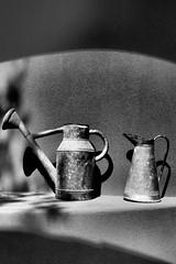 2744 (towbinaj) Tags: shadow wateringpot phoenixdesertbotanicalgarden