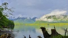 P1000556  Haida Gwaii 2012     1.2k (ChanHawkins) Tags: mountain fishing harbour shoreline 2012 haidagwaii
