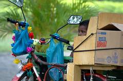 What's in my future? (fcribari) Tags: boy brazil colors face bike bicycle espelho brasil cores mirror nikon child box garoto bicicleta caixa criança recife menino pernambuco rosto jaqueira parquedajaqueira d7000