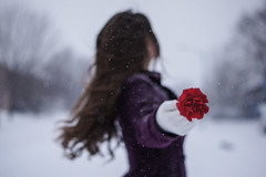(Samantha Stock) Tags: winter snow flower girl 50mm sister sony stock samantha nex5