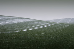Big Wave (parkerbernd) Tags: schnee winter mist snow tractor green lines fog germany landscape deutschland lumix spurs grey big haze traktor mood nebel dusk empty feld spuren wave panasonic minimalism absract welle emptiness mv acker trecker schwerin gx1