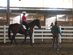 "Riding Lessons • <a style=""font-size:0.8em;"" href=""https://www.flickr.com/photos/92793179@N08/8516765930/"" target=""_blank"">View on Flickr</a>"