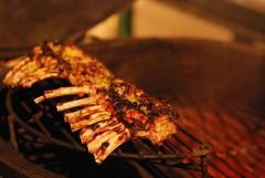 Sitting on the indirect half-moon rack to finish cooking (gadgetgeek) Tags: ribs lamb bge biggreenegg rackoflamb fridaydinner lambribs shadybrookfarm frenchedbones