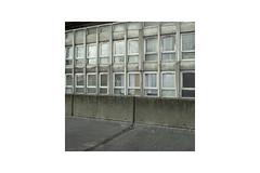 Rear (Ben__Jones) Tags: public robin gardens square hood ipernity benpatio sigmadp1