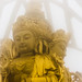 (nosha) Tags: china mist green beauty temple gold golden buddha buddhist shenzen  china2013
