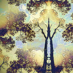 Meditation (hollykl) Tags: flowers trees abstract photomanipulation square digitalart bloom hypothetical vividimagination arteffects sharingart awardtree exoticimage netartii