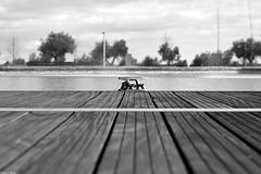Encadenado (Sonia Montes) Tags: parque white black blancoynegro canon 50mm muelle madera fuente bn cadena soniamontes