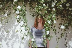 audrey. (emmzies) Tags: roses portrait white flower rose spring bush vines texas audrey hanging fredericksburg floweringbush