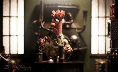 Meep. (3rd-Rate Photography) Tags: canon toy 50mm lab florida action science 7d figure jacksonville muppet diorama beaker themuppetshow toyphotography earlware 3rdratephotography