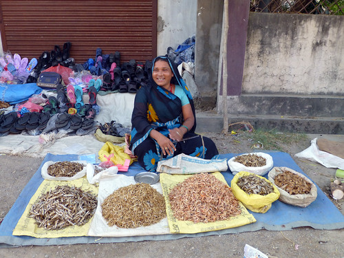A women selling dried small fish in Bhairahawa, Nepal. Photo by Jharendu Pant, 2012.