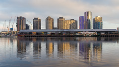 Morning Reflections (samiKoo) Tags: reflection reflections buildings building architecture melbourne melbournearchitecture docklands water morning australia city cityscape cityview canon 6d 24105mml photography photo photograph urban