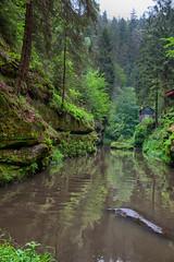160524_155930_AB_4591 (aud.watson) Tags: europe czechrepublic bohemia decindistrict hrenska riverkamenice kamenicegorge edmundgorge gorge ravine river water rocks rockformation cliffs