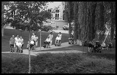 THE AGES OF MAN (LitterART) Tags: lebensbahn alter rollstuhl klinik clinicum park judenforf judendorfstrassengel gartweinstrassengel klinikjudendorfstrassengel oldage seniority handicap barierrefrei altenpflege sozial social nikon p7000 hospital reha rehabilitation agesofman ages rehab