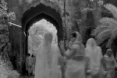 ADS_0000110105 (dickysingh) Tags: ranthambore ranthambhore hindu festival