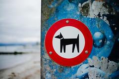 Walk (jperezsl) Tags: globalphotowalk sandip lausanne ouchy m9 voigtländer 35mm14